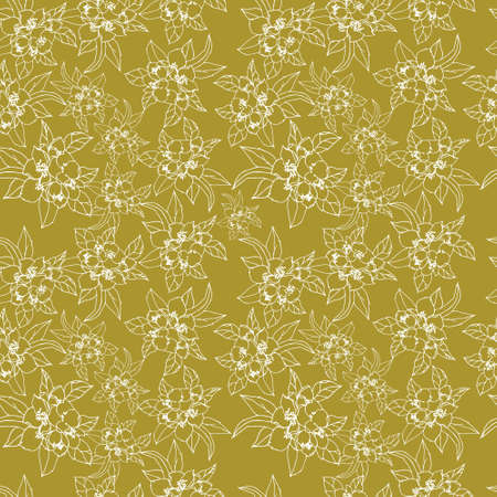 jasmin: Seamless floral vector pattern with flowers of jasmine. Hand-drawn line art illustration. Illustration