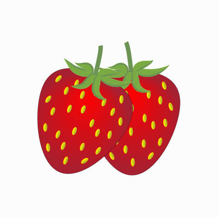 Two ripe delicious strawberries for any kind of design