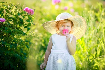 Cute girl wearing hat and white dress stand in the pink flower field of Sunn Hemp Crotalaria Juncea.