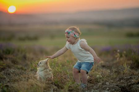 Outdoor portrait of a cute little child, a baby or toddler girl with her dog, a yellow labrador sitting on the ground