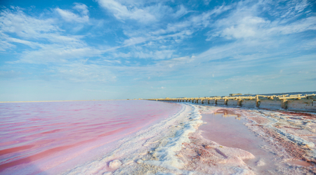 Brine and salt of a pink lake, colored by microalgae Dunaliella salina, famous for its antioxidant properties, enriching water by beta-carotene, used in medicine, dermatology and spa.