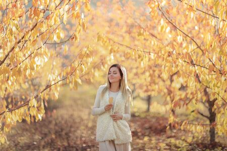 A woman in a white warm sweater on the background of autumn trees with yellow leaves.