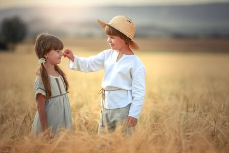 Two children a boy and a girl of preschool age walk together in a wheat field. Stock Photo