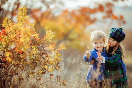 Children brother and sister walk in the autumn yellow forest dressed in French Provence style.