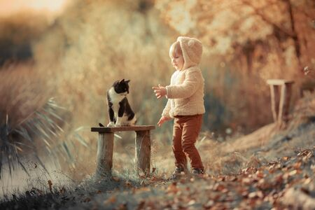 A 4 year old child walks in the Park in autumn and strokes a cat that sits on a bench. 版權商用圖片