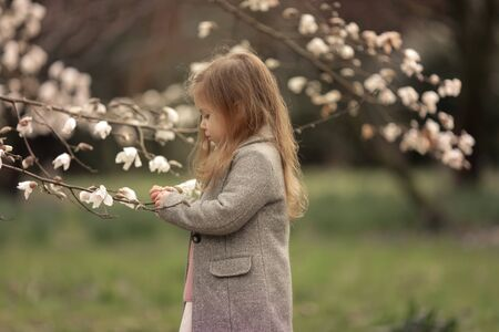 A girl stands in a park and looks at the branches of blossoming trees. Фото со стока
