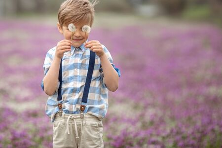 A child with dandelions in his hands. Boy close up hiding behind the two florets of a dandelion