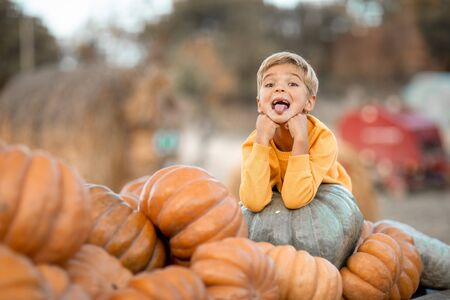 Boy in yellow bright sweater sits on a cart with a pumpkin Stock Photo