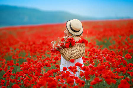 Rear view of a woman in a field with red poppies.