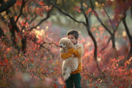 A boy stands in the autumn forest and holds a dog in his arms. 免版税图像