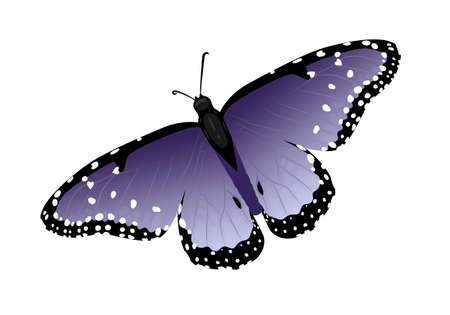 Multicolor butterfly with hearts on wings. Isolated vector illustration on a white background. Sooft purple wings.