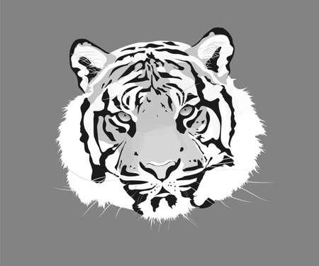 The tiger vector illustration. Animal head icon. Vektorové ilustrace