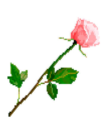 Pixel art red rose flower detailed isolated vector - Vektorgrafik. Pixelated wedding rose and leafs, valentines day.
