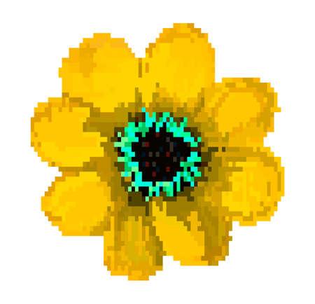 Vector pixel art. Beautiful flower. Field flower isolated. Pixel flowers art cartoon retro game style.