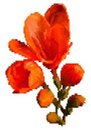 Vector pixel art flower isolated. Meadow flowers. Vector pixelated illustration.