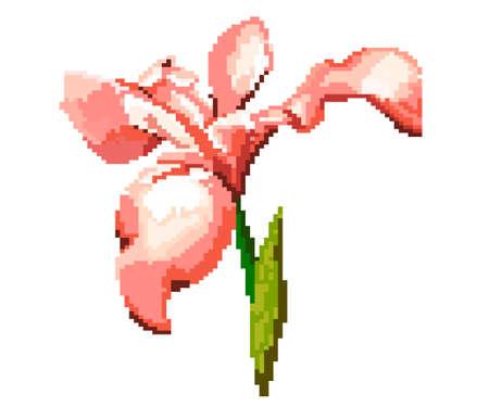 Pixel fleurde luce for games and applications - Vektorgrafik. Iris flower vector illustration. Flower icon. Colourful.