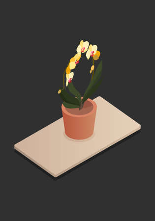Isometric plants in pot on table. 3d plants for design of a living room or office. Vector illustration.