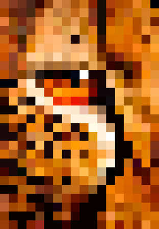 Pixel art leopard vector illustration. Eye of leopard pixel illustration.