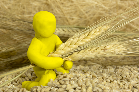 plasticine man among grains, wheat ears