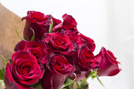 bouquet of red roses, many flowers on a light background