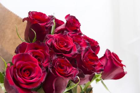 bukiet czerwonych róż, wiele kwiatów na jasnym tle