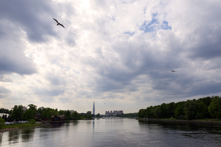 view of the Neva river and the island in St. Petersburg, seagulls, birds in the sky with clouds in the light