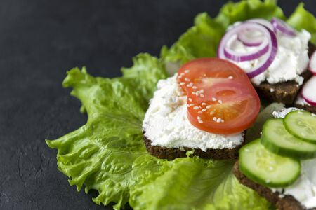 sandwiches with grain bread, soft cheese, ricotta, tomato, sesame, cucumber and onion on green lettuce