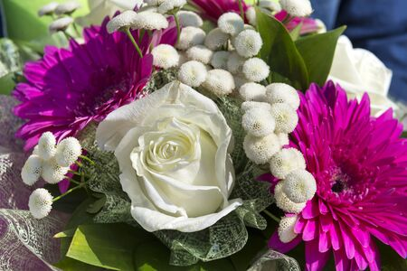 bouquet of fresh flowers, white roses, lilac gerberas, white chrysanthemums, colorful flowers