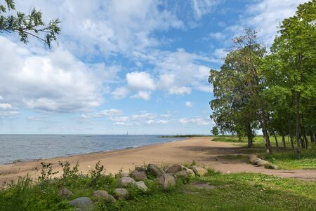 Gulf coast in summer, beach with sand stones, trees on the shore, North sea, sky with clouds, St. Petersburg on the horizon,