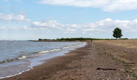 Gulf coast, beach, people away on the beach, 1 tree, coast of St. Petersburg, North sea,