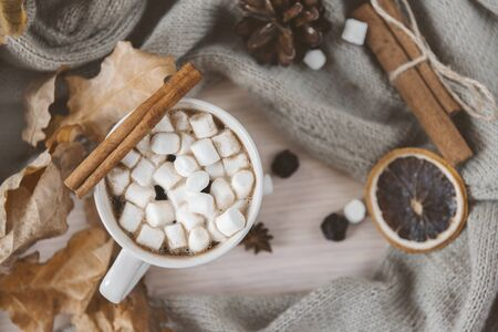 1 mug of hot coffee with marshmallows and cinnamon, a slice of dried orange, dry leaves, on the background of knitted fabric, autumn drink Stok Fotoğraf