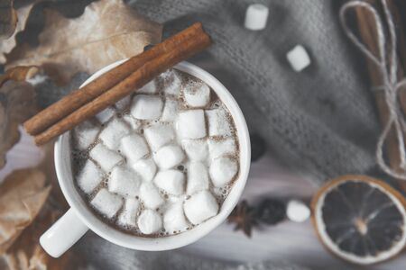 hot autumn drink, 1 mug of hot coffee with marshmallows and cinnamon, dry leaves, a slice of dried orange on a background of knitted fabric,