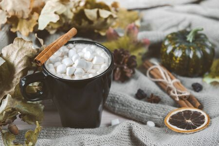 mug of hot coffee, chocolate with lots of marshmallows , cinnamon, , candle , dry autumn leaves, small green pumpkin  ,  knitted sweater , autumn hot drink Stok Fotoğraf