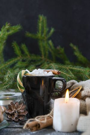 1 mug with hot chocolate and marshmallows, cinnamon stick and Lollipop, candle, spruce branch on a dark background