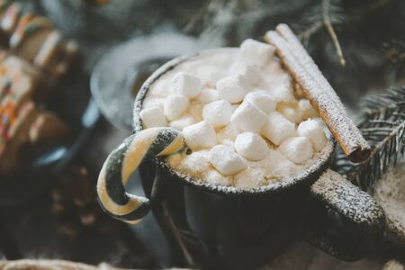 hot winter drink, 1 black coffee mug with marshmallow, Lollipop and cinnamon stick on spruce branch background,