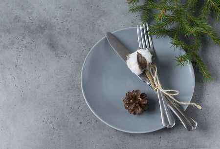 serving, fork and knife with a sprig of cotton and a cone on a gray plate, spruce branch on a gray background Reklamní fotografie