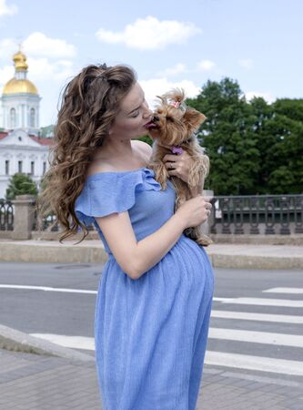 1 white pregnant woman in a blue dress stands on the street with a dog,  toy Terrier Stockfoto