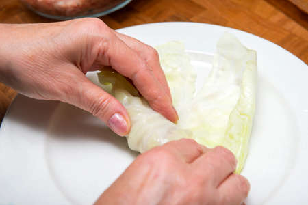 cooking stuffed cabbage, rolls with meat and cabbage, women's hands