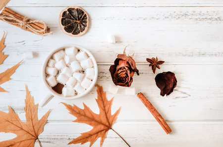 Cup of cocoa with marshmallows, autumn yellow maple leaves, cones, cinnamon sticks, dried rose on a white wooden background copy space 免版税图像