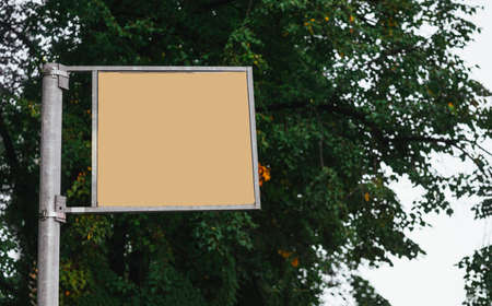 empty yellow sign on the background of a tree canopy in the open air, copy space