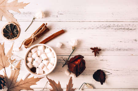 cocoa with marshmallows, autumn yellow maple leaves, cones, cinnamon sticks, dried rose on a white wooden background copy space top view, hot chocolate 免版税图像