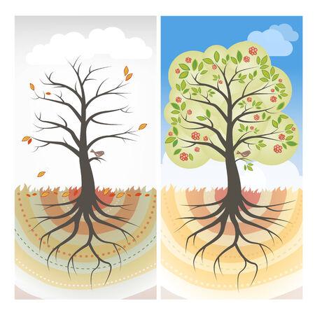 tiredness: Seasons trees illustrations Illustration
