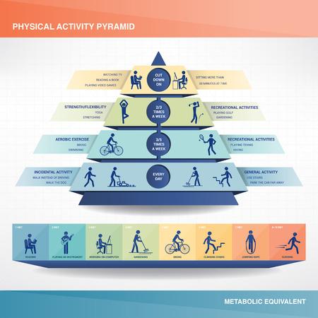 sedentario: Pirámide de la actividad física Vectores