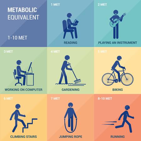 Metabolic equivalent Vector