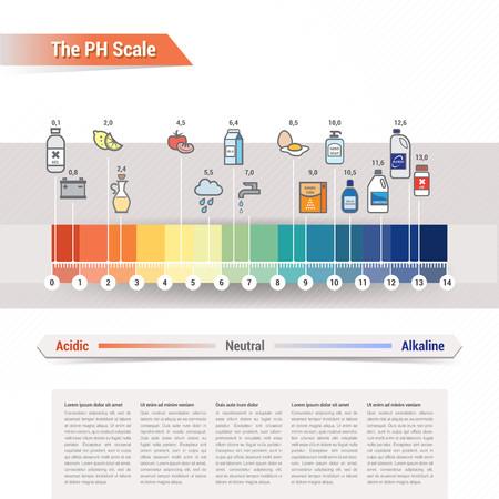 ácido: La escala de PH Vectores