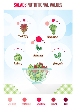 romaine lettuce: Salads nutritional values with infographic, salad varieties and full bowl Illustration