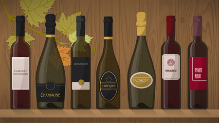 �tag�re bois: Collection de bouteilles de vin de luxe avec des �tiquettes sur une �tag�re en bois avec feuille de vigne sur fond Illustration