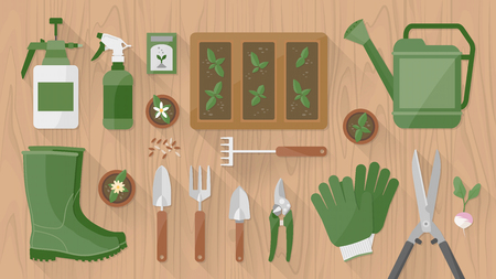 Gardening tools and equipment on a wooden table top view with seeds and sprouts growing