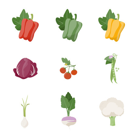 Garden fresh vegetables set on white background, including bell pepper, chicory, tomato, peas, onion, turnip and cauliflower