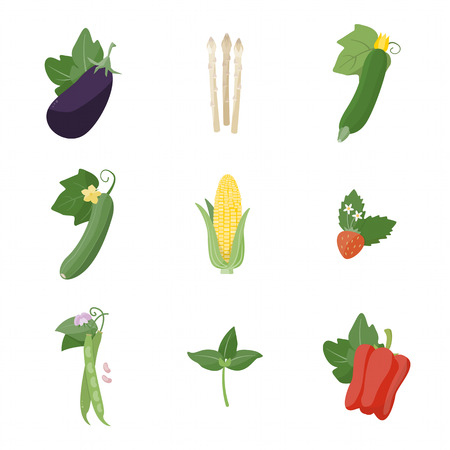 September Garden fresh vegetables on white background including asparagus eggplant zucchini corn beans strawberry basil and bell pepper